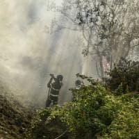 Ancora incendi nel Senese e nel Grossetano. Rossi: