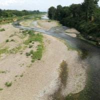 Toscana, in agricoltura 200 milioni di danni per la siccità