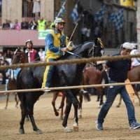 Palio di Siena, positivo ai farmaci il cavallo che si era rifiutato di correre