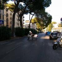 Firenze, chiuso lungarno Colombo per un ramo pericolante