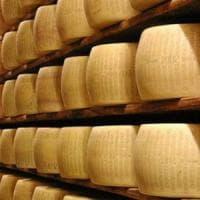 Arezzo, sequestrati mille capi di bestiame e 200 forme di formaggio