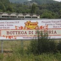 Firenze, uno stand del Forteto alla Festa dell'Unità: è polemica