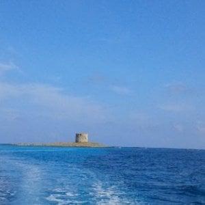 Tragica battuta di pesca in Sardegna, muore un 41enne di Fucecchio