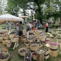 Lucca con Murabilia diventa capitale del giardinaggio