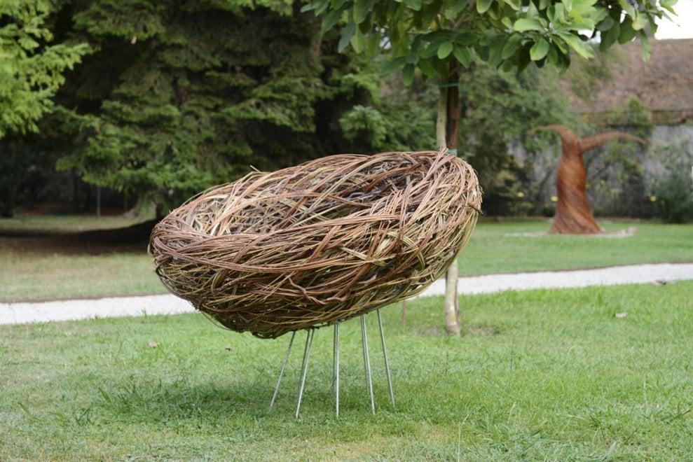 Nidi e crisalidi, le sculture fatte coi rami da Emy Petrini all'Orto Botanico di Lucca