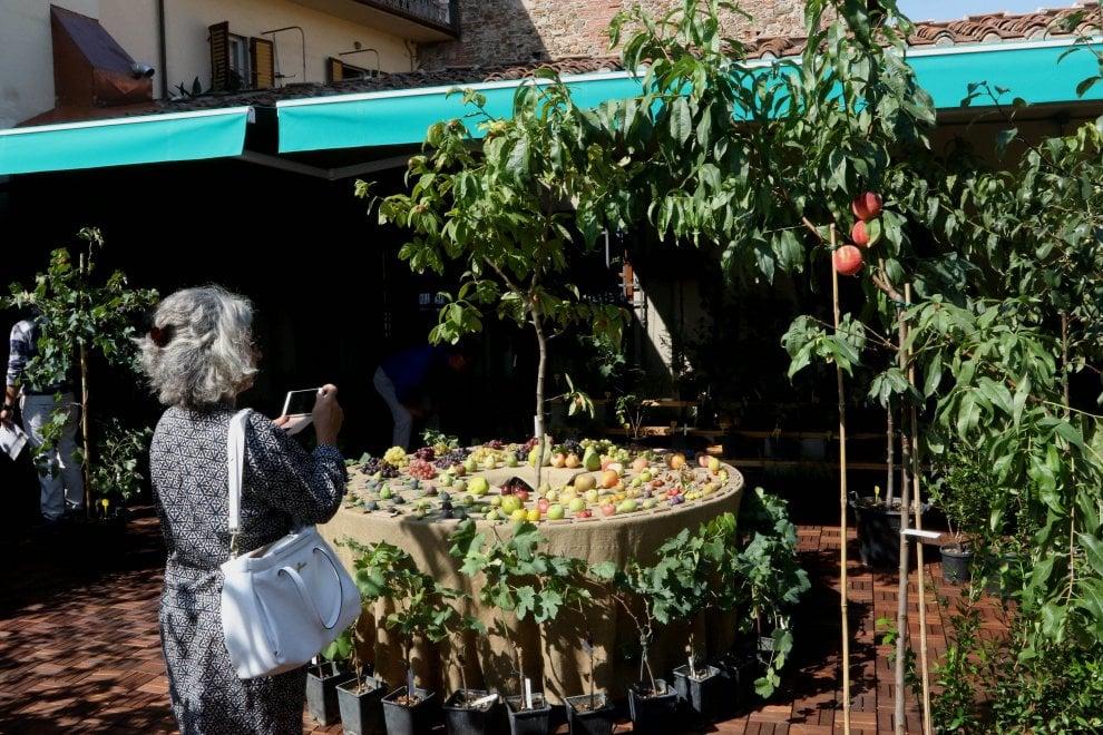 Firenze, a Sant'Ambrogio arriva il supermercato bio firmato dallo chef Fabio Picchi