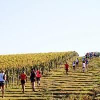 Nordic walking ed ecomaratona del Chianti: weekend di sport