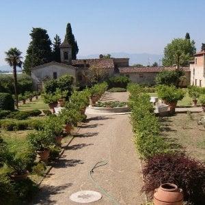 Ville giardini universit e pievi in toscana domenica - Foto giardini ville ...