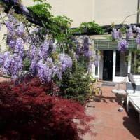 Alla Toscana il Bonus Verde: è la regione che produce più fiori e piante