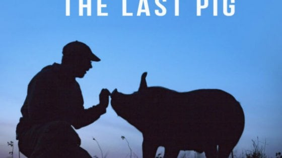 "Il pluripremiato ""The last pig"" alle Murate"