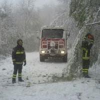 Neve e vento sulla Toscana: black out e traffico in tilt