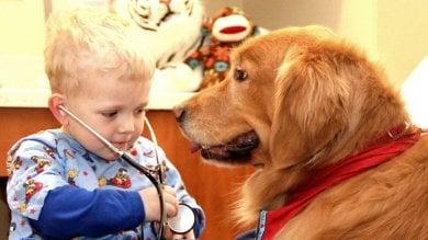 Cuccioli o musica per strappare il sorriso,  arriva il master in pet therapy & C.
