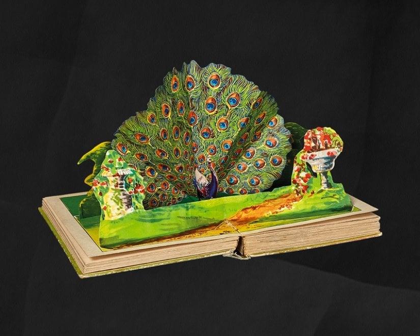 """Un viaggio nei testi animati, a Cecina arriva la mostra sui libri """"pop-up"""""""