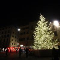 Firenze, ecco il grande albero di Natale donato da Frescobaldi
