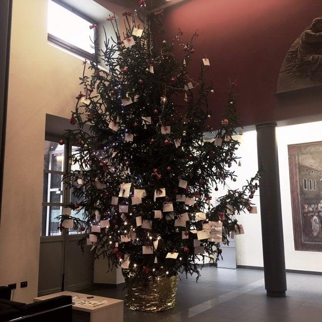 Firenze, desideri e ringraziamenti appesi all'albero dell'ospedale di Santa Maria Nuova