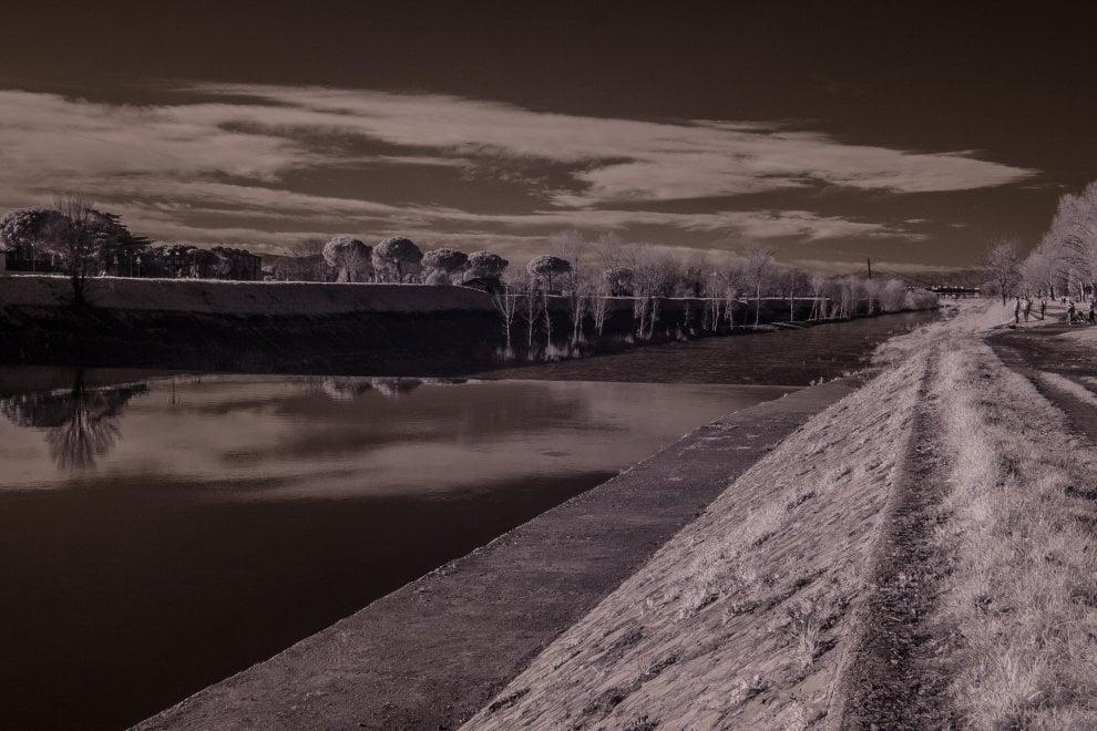 Firenze, le Cascine viste agli infrarossi