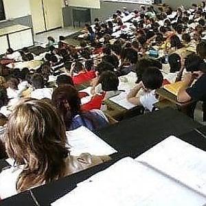 Agribusiness e tanto inglese: nuovi corsi nelle Università della ...