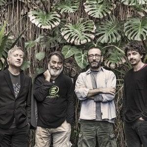 Botanica: quando la scienza incontra la musica