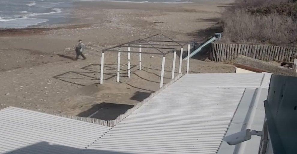 Piombino, caccia al ladro della tartaruga: spiaggiata e subito portata via in un sacco