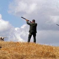 Grosseto, uccidono un cane a fucilate, il proprietario li denuncia