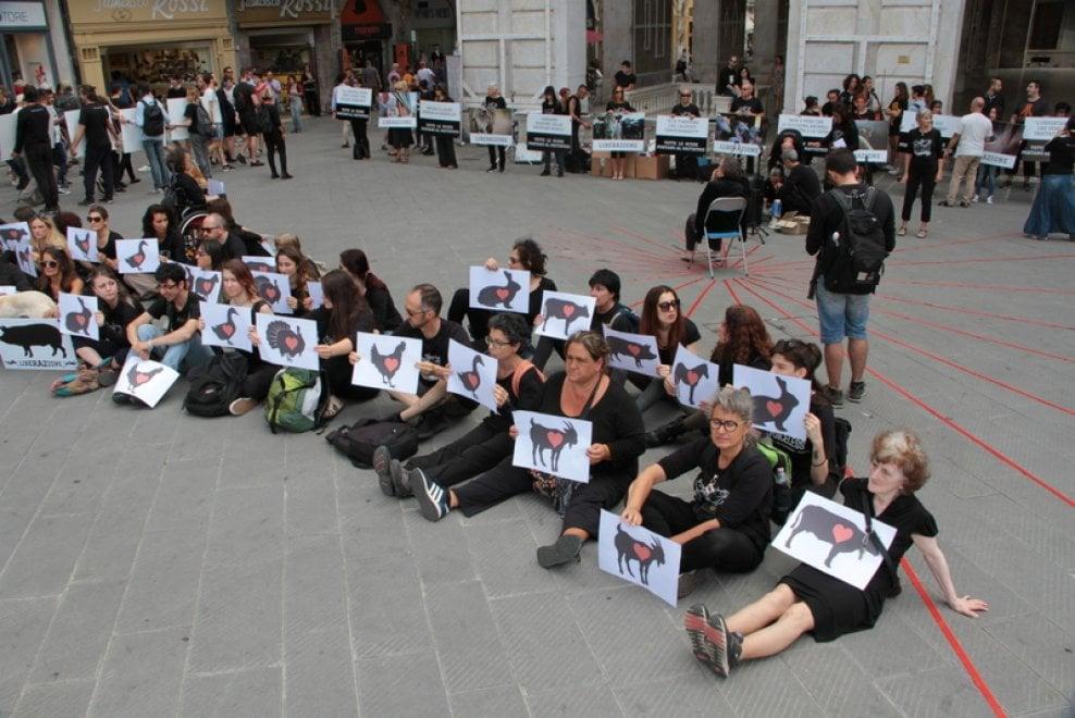 """Protesta a Pisa: """"Chiudiamo i mattatoi"""" animalisti in piazza"""