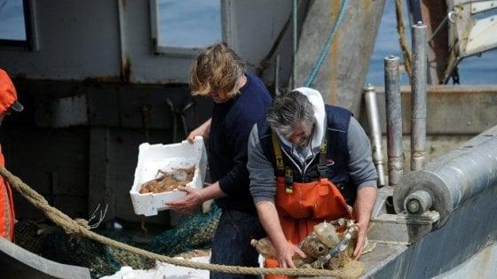 I pescatori che puliscono il mare dalla plastica: il progetto toscano arriva a Bruxelles