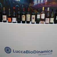 I vini, l'olio e il pane di LuccaBiodinamica al Lucca Summer Festival