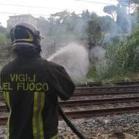 Firenze, fiamme al giardino dell' Orticoltura: a fuoco sterpaglie