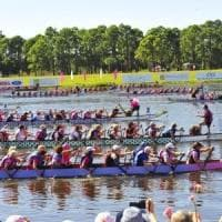 A Wave of Pink: Florence's International Dragon Boat Festival