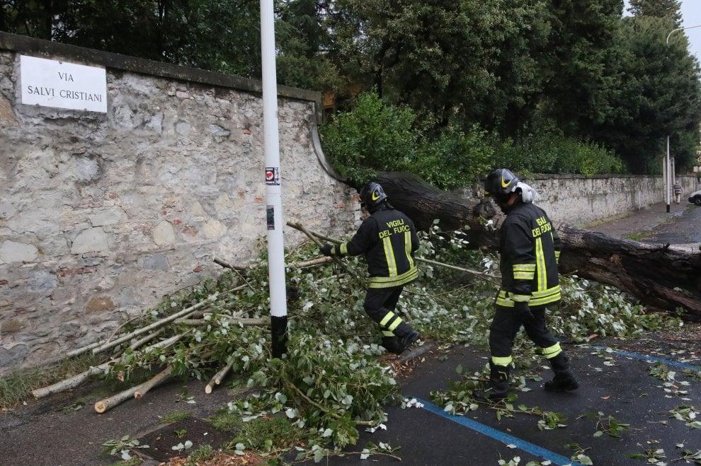 Nubifragio a Firenze, due alberi caduti per il maltempo