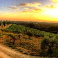Cool Tuscan Ferragosto Day Trips