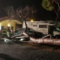 Maltempo in Toscana, allagamenti e alberi caduti