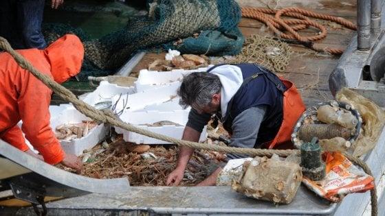 Salvamare, per ripulire il mare dalla plastica