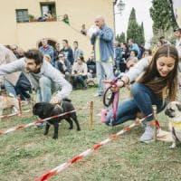 Le Olimpiadi dei carlini, in 800 a Livorno per le Ugopiadi