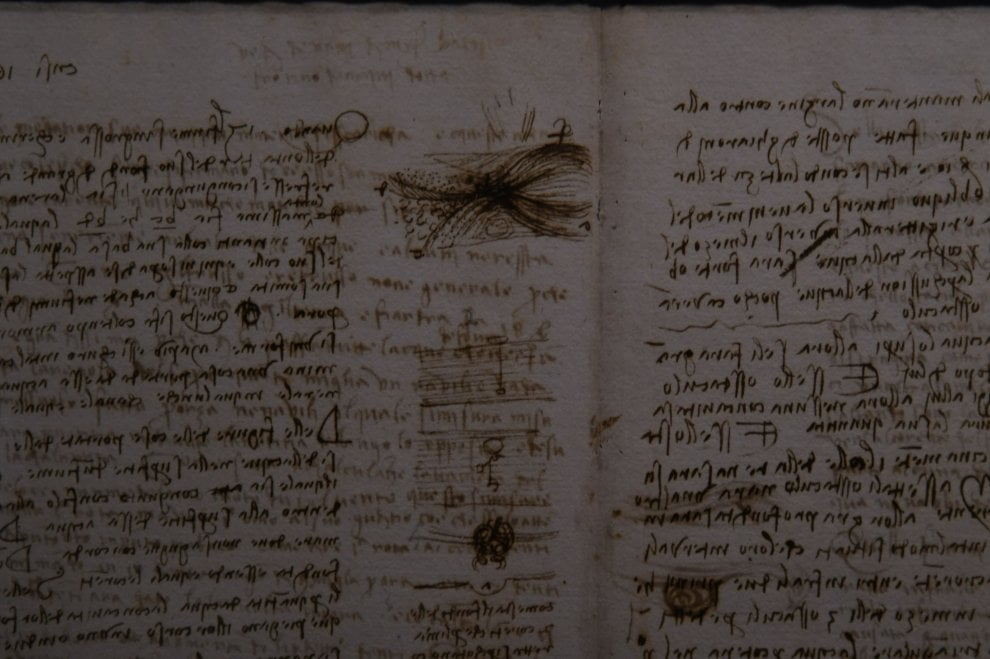 Il Codice Leicester torna a Firenze, l'opera di Leonardo in mostra agli Uffizi