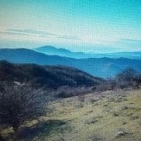 Monti della Calvana, trekking con il Lupo. Ultimi posti disponibili