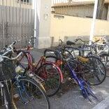 Rep :   Dal giardinaggio      al riciclo delle bici per integrare minori senza famiglia