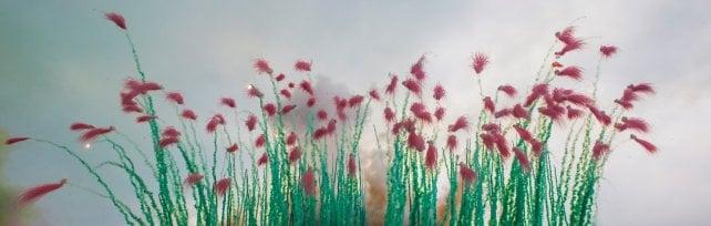 Al piazzale Michelangelo i fiori del Rinascimento nel cielo di Firenze:  il regalo pirotecnico di Cai Guo Qiang