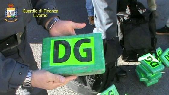 Oltre 650 chili di droga nascosta nei sacchi del caffè: maxi sequestro al porto di Livorno