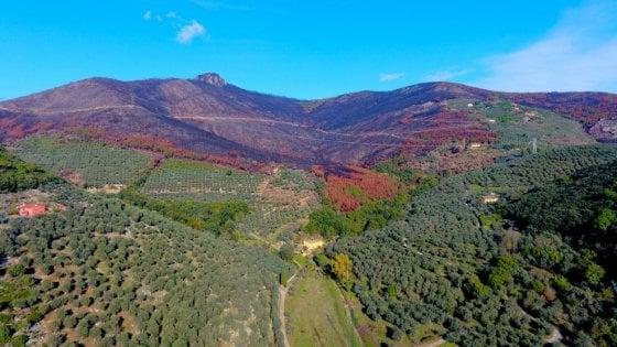 """Il Monte Pisano è il """"luogo del cuore"""" Fai più votato d'Italia"""