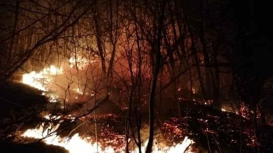 Da sabato fiamme in un bosco nel pistoiese