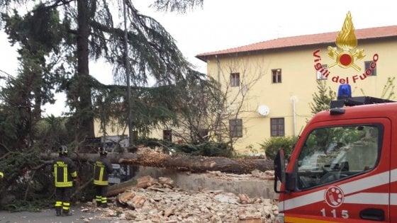 Maltempo, a Firenze 3 alberi caduti e 8 spezzati. Il vento ferma i voli a Peretola. Chiuso Boboli