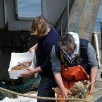 I pescatori potranno raccogliere la plastica in mare, primo via libera dal governo al