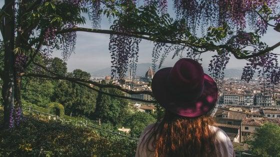 Firenze, glicine in fiore a Villa Bardini