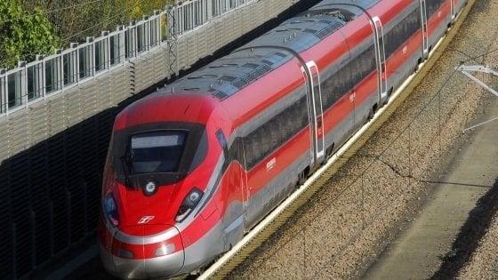 Treno investe un gregge, muoiono 20 capre: ritardi sulla linea Firenze-Roma