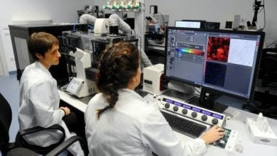 Rep :   La Toscana recluta cento ricercatori