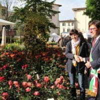 Firenze, al Giardino dell'Orticoltura la festa dei fiori