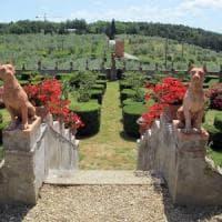 The Wonders of 'Open Courtyards & Gardens'