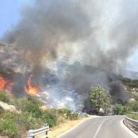 Incendio nei boschi dell'Elbam le fiamme divampate da un camper