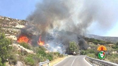 Incendio nei boschi dell'Elba, le fiamme divampate da un camper  foto